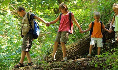Summer camp Εκπαιδευτική Αναγέννηση
